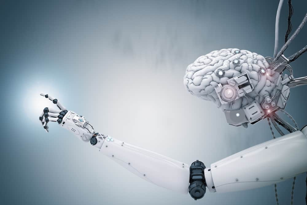 tokyo illinois biohybrid robot cyborg robotics